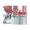 TOO COLIBRI TELECOM - Ежемесячная абонентская плата